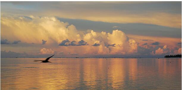 COOKIN ISLANDS DESTINATIONS